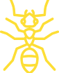 Logo of a fire ant