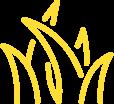 Logo of grass