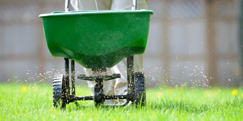 A human pushing a lawn fertilizer machine in a yard