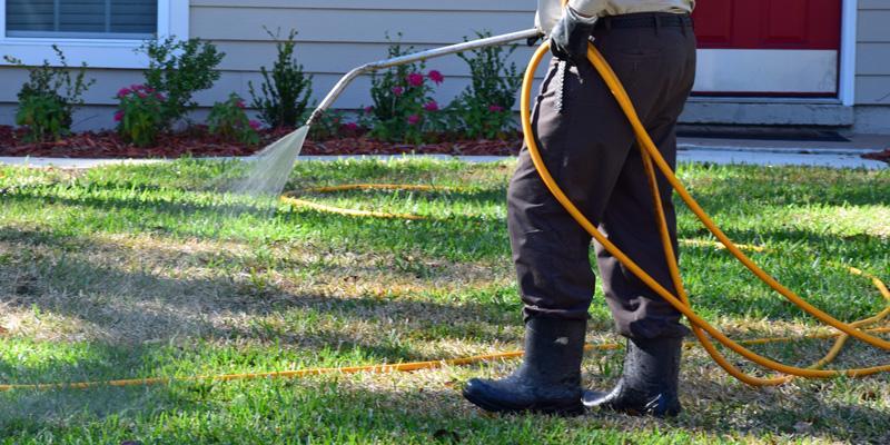 A lawn technician spraying preventative pest control treatment in a yard