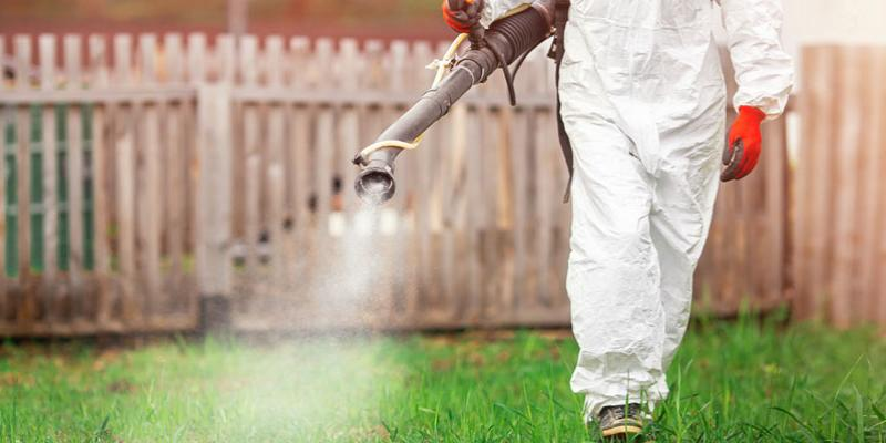 A technician spraying mosquito control treatment in a yard